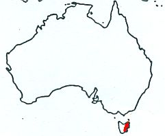Forty-spotted Pardalote map