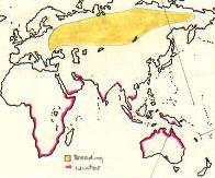 Sharp-tailed Sandpiper map
