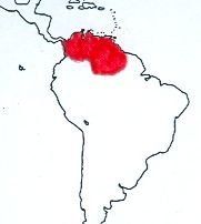 Red-legged Tinamou map