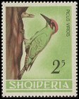 Cl: Green Woodpecker (Picus viridis) SG 834 (1964) 160 [3/38]