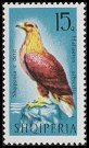 Cl: White-tailed Eagle (Haliaeetus albicilla) <<Shqiponja e detit>>  SG 1085 (1966) 75 [3/6]