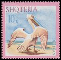 Cl: Dalmatian Pelican (Pelecanus crispus) <<Pelikan>> (Repeat for this country)  SG 1098 (1967) 25 [3/22]