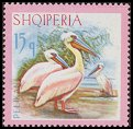 Cl: Dalmatian Pelican (Pelecanus crispus)(Repeat for this country)  SG 1099 (1967) 55 [3/22]