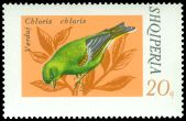 Cl: European Greenfinch (Carduelis chloris) <<Verduni>>  SG 1685 (1974) 35