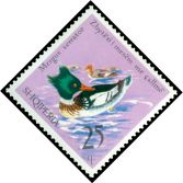 Cl: Red-breasted Merganser (Mergus serrator) <<Zhytesi i mesem me callme>>  SG 1765 (1975) 35