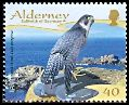 Cl: Peregrine Falcon (Falco peregrinus)(Repeat for this country)  SG 337 (2008) 95 [4/49]