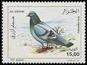Cl: Rock Pigeon (Columba livia) SG 1481 (2005) 110