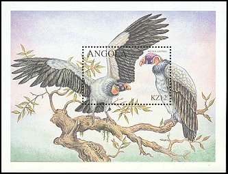 Cl: King Vulture (Sarcoramphus papa)(Out of range)  SG 1548f (2000)