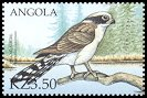 Cl: Laughing Falcon (Herpetotheres cachinnans)(Out of range)  SG 1548b6 (2000)