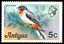 Cl: Rufous-throated Solitaire (Myadestes genibarbis) SG 474 (1976) 200