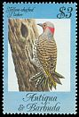 Cl: Northern Flicker (Colaptes auratus) SG 873 (1984) 275