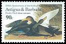 Cl: American Black Duck (Anas rubripes)(Out of range)  SG 991 (1986) 275