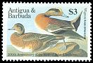 Cl: American Wigeon (Anas americana) SG 993 (1986) 475