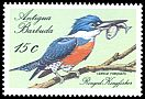 Cl: Ringed Kingfisher (Ceryle torquatus)(Out of range)  SG 1155 (1988) 55