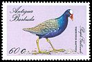 Cl: Purple Gallinule (Porphyrio martinica) SG 1157 (1988) 100