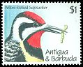 Cl: Yellow-bellied Sapsucker (Sphyrapicus varius)(Out of range)  SG 1452 (1990) 125