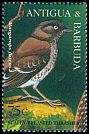 Cl: Scaly-breasted Thrasher (Allenia fusca) SG 2148 (1995) 110