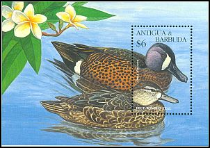 Cl: Blue-winged Teal (Anas discors) SG 2164b (1995) 650