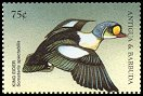 Cl: King Eider (Somateria spectabilis)(Out of range)  SG 2757 (1998) 65