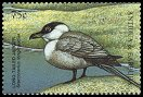 Cl: Long-tailed Jaeger (Stercorarius longicaudus)(Out of range)  SG 2765 (1998) 65