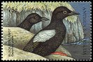 Cl: Black Guillemot (Cepphus grylle)(Out of range)  SG 2766 (1998) 65