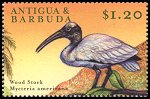 Cl: Wood Stork (Mycteria americana)(Out of range)  SG 2983 (2000) 75