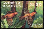 Cl: Saffron Finch (Sicalis flaveola)(Out of range)  SG 2984 (2000) 75