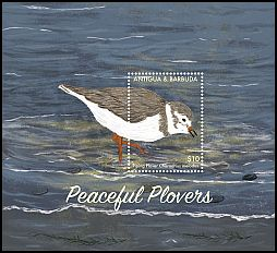 Cl: Piping Plover (Charadrius melodus) SG 4490 (2017)