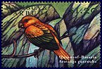 Cl: Golden Parakeet (Guarouba guarouba)(Out of range)  SG 2976 (2000) 75