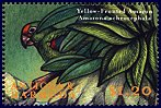 Cl: Yellow-crowned Parrot (Amazona ochrocephala)(Out of range)  SG 2975 (2000) 75