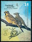 Cl: Yellow Cardinal (Gubernatrix cristata) <<Cardenal amarillo>>  new (2013)  [9/11]