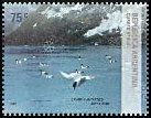 Cl: Cape Petrel (Daption capense)(Repeat for this country)  SG 3233 (2007) 160 [4/14]