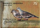 Cl: Picui Ground-Dove (Columbina picui) SG 2732 (2000) 275 [1/2]