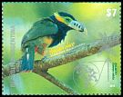 Cl: Spot-billed Toucanet (Selenidera maculirostris) <<Arasar&iacute; chico>>  new (2015)  [10/5]