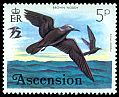 Cl: Brown Noddy (Anous stolidus) SG 203 (1976) 70