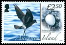 Cl: Band-rumped Storm-Petrel (Oceanodroma castro)(Repeat for this country) (I do not have this stamp)  SG 997 (2008) 750 [8/16]