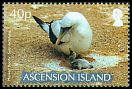 Cl: Masked Booby (Sula dactylatra)(Repeat for this country) (I do not have this stamp)  SG 984 (2007) 225 [8/16]