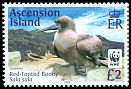 Cl: Red-footed Booby (Sula sula)(Repeat for this country)  SG 1244 (2016)