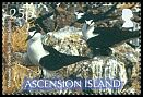 Cl: Sooty Tern (Sterna fuscata)(Repeat for this country) (I do not have this stamp)  SG 982 (2007) 125 [8/16]