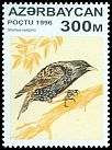 Cl: European Starling (Sturnus vulgaris) SG 329 (1996) 130