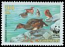 Cl: Ferruginous Pochard (Aythya nyroca)(Repeat for this country)  SG 481 (2000) 70