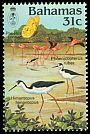 Cl: Caribbean Flamingo (Phoenicopterus ruber)(Repeat for this country)  SG 687 (1984) 375
