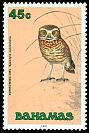 Cl: Burrowing Owl (Athene cunicularia) SG 899 (1991) 300