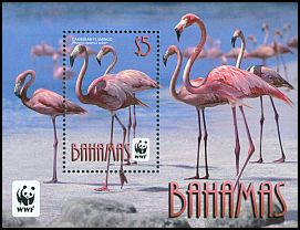 Cl: Caribbean Flamingo (Phoenicopterus ruber)(Repeat for this country) (I do not have this stamp)  SG 1620 (2012)  [7/49]