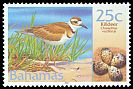 Cl: Killdeer (Charadrius vociferus)(Repeat for this country)  SG 1253 (2001) 80