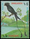 Cl: Greater Racket-tailed Drongo (Dicrurus paradiseus) SG 513 (1994) 60