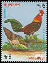 Cl: Red Junglefowl (Gallus gallus) SG 515 (1994) 60