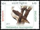 Cl: White-bellied Sea-Eagle (Haliaeetus leucogaster) SG 1073 (2011)  [10/28]