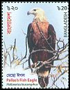 Cl: Pallas' Fish-Eagle (Haliaeetus leucoryphus) SG 1330 (2018)  [11/44]