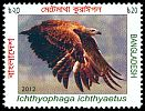 Cl: Grey-headed Fish-Eagle (Ichthyophaga ichthyaetus) SG 1095 (2012)  [10/28]